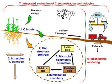 Carbon sequestration in terrestrial ecosystems an for 0 4 soil carbon